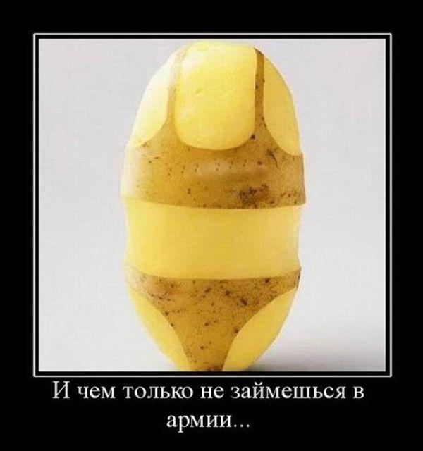 смотреть онлайн украина мае талант лучшее: